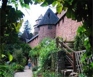 ©Château du Haut-Koenigsbourg - Jardin médiéval