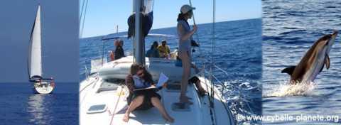 Ecovolontariat et comptage en mer